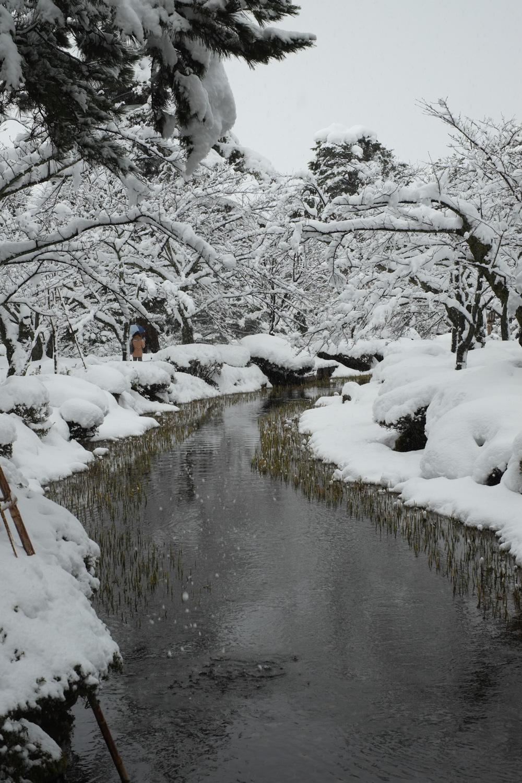 金沢 兼六園(Kanazawa Kenroku-en)-11
