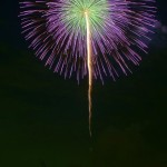 第39回 江戸川区花火大会(The 39th Edogawa-ku fireworks display)-008