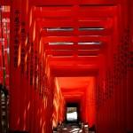 山王日枝神社(Sanno Hie-jinja Shrine)-005