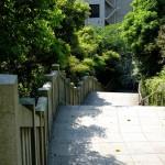 山王日枝神社(Sanno Hie-jinja Shrine)-009
