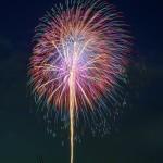 第39回 江戸川区花火大会(The 39th Edogawa-ku fireworks display)-005
