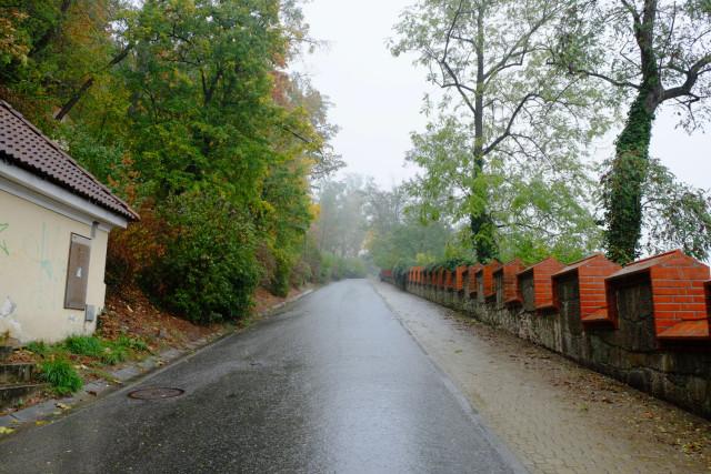 ベズルチョヴァの坂道