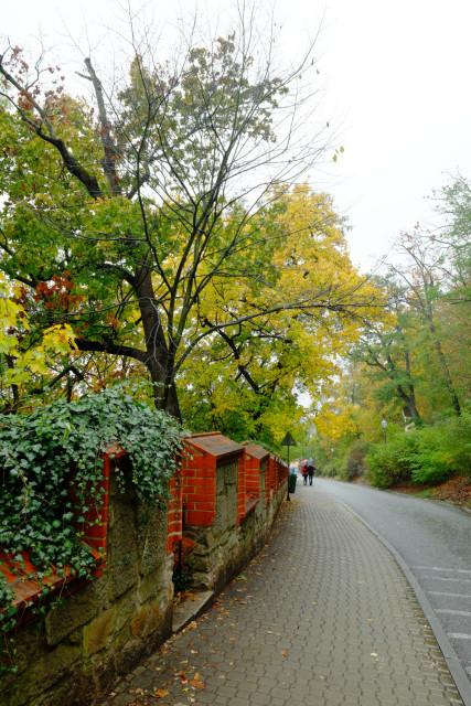 ベズルチョヴァの坂を下る。紅葉が綺麗だ。