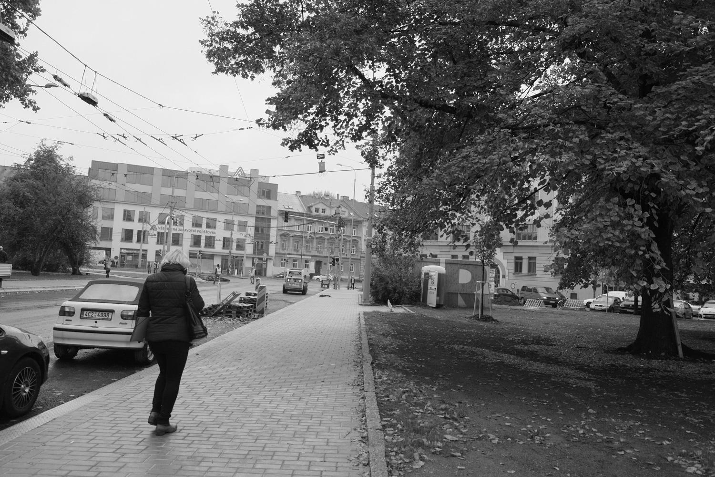 ジュシュコヴァ・トジーダ通りの風景
