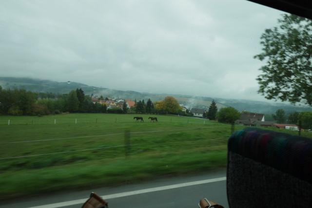 ボヘミアの森を行くバスからの眺め