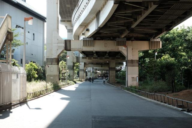 首都高速9号深川線の高架下は遊歩道になっている。