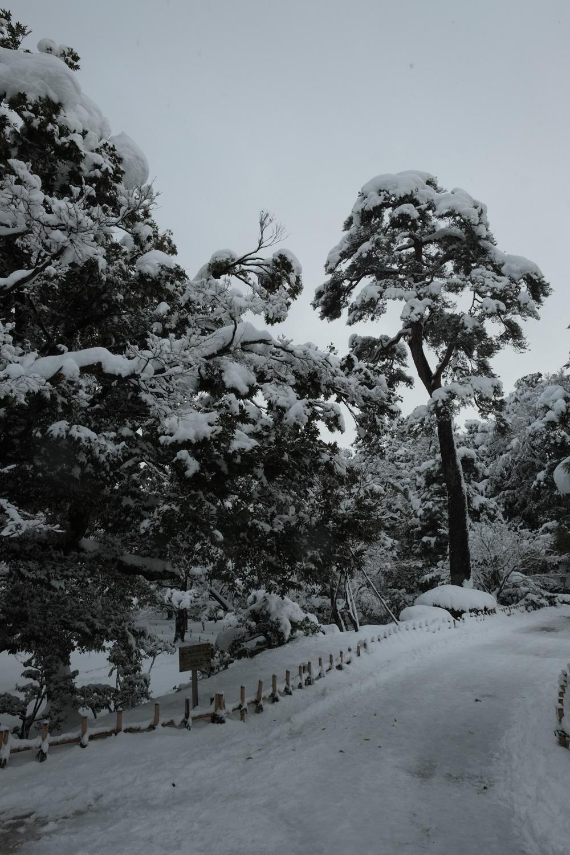 金沢 兼六園(Kanazawa Kenroku-en)-06